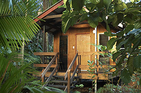 Cape Trib Beach House - tourismnoosa.com