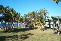 BIG4 Bowen Coral Coast Beachfront Holiday Park - tourismnoosa.com