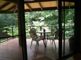 Cape Trib Exotic Fruit Farm Bed and Breakfast - tourismnoosa.com