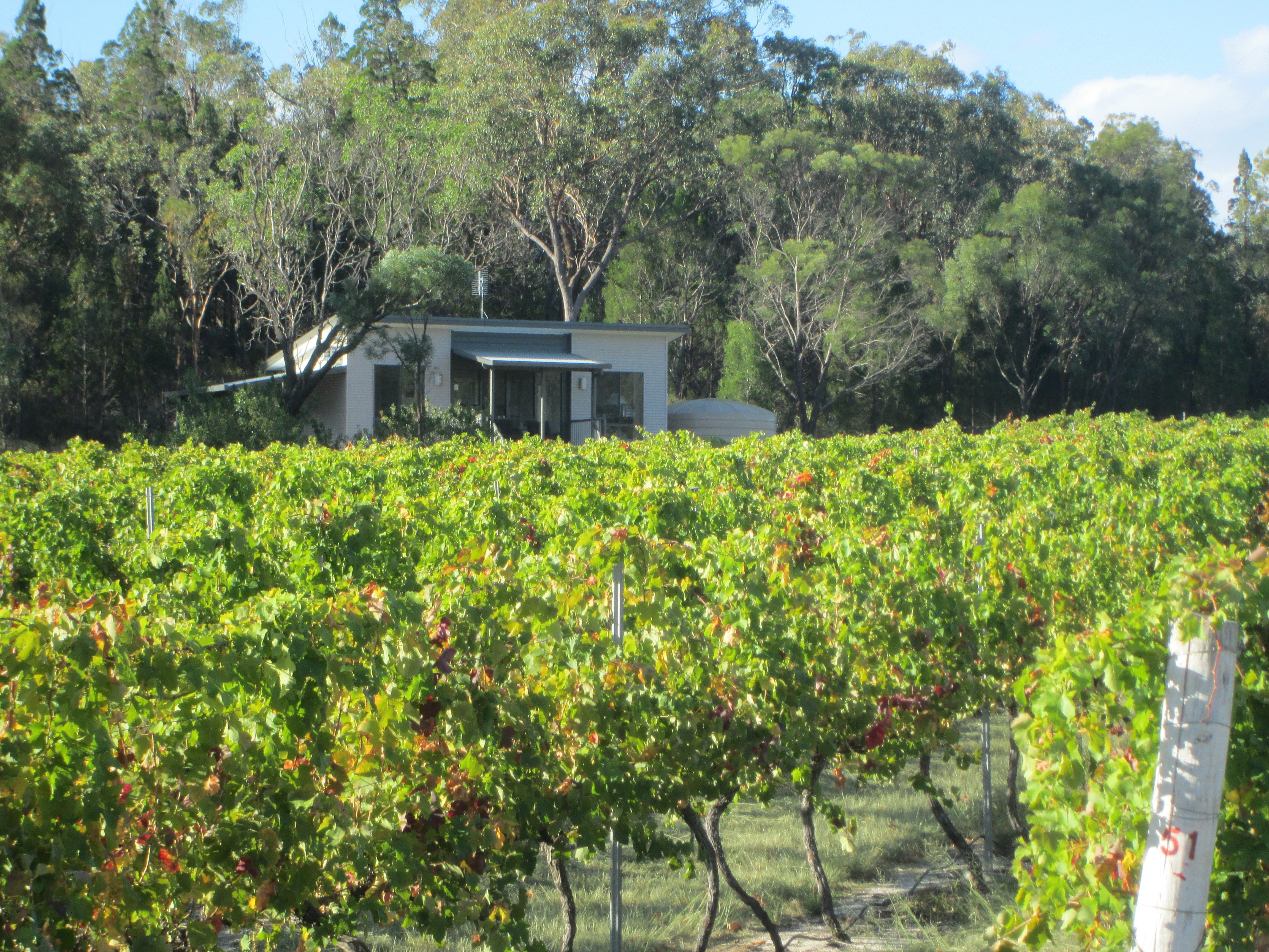 Just Red Wines Vineyard Cabins - tourismnoosa.com