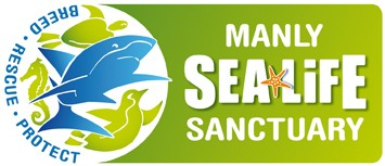 Manly SEA LIFE Sanctuary - tourismnoosa.com