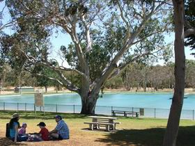 Naracoorte Nature Park and Swimming Lake - tourismnoosa.com