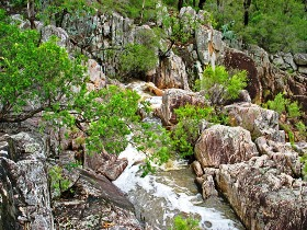Crows Nest National Park - tourismnoosa.com
