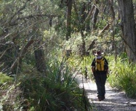 Barren Grounds Nature Reserve - tourismnoosa.com