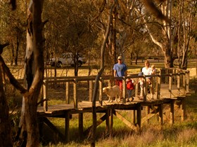 Loxton's Drives Walks and Trails - tourismnoosa.com