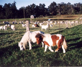 Trudgalong Farm - tourismnoosa.com