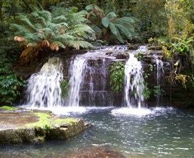 Barrington Tops National Park Walks - tourismnoosa.com