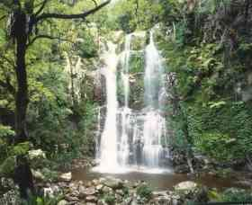 Budderoo National Park - The Falls Walk - tourismnoosa.com