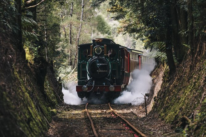 West Coast Wilderness Railway River and Rainforest from Strahan - tourismnoosa.com