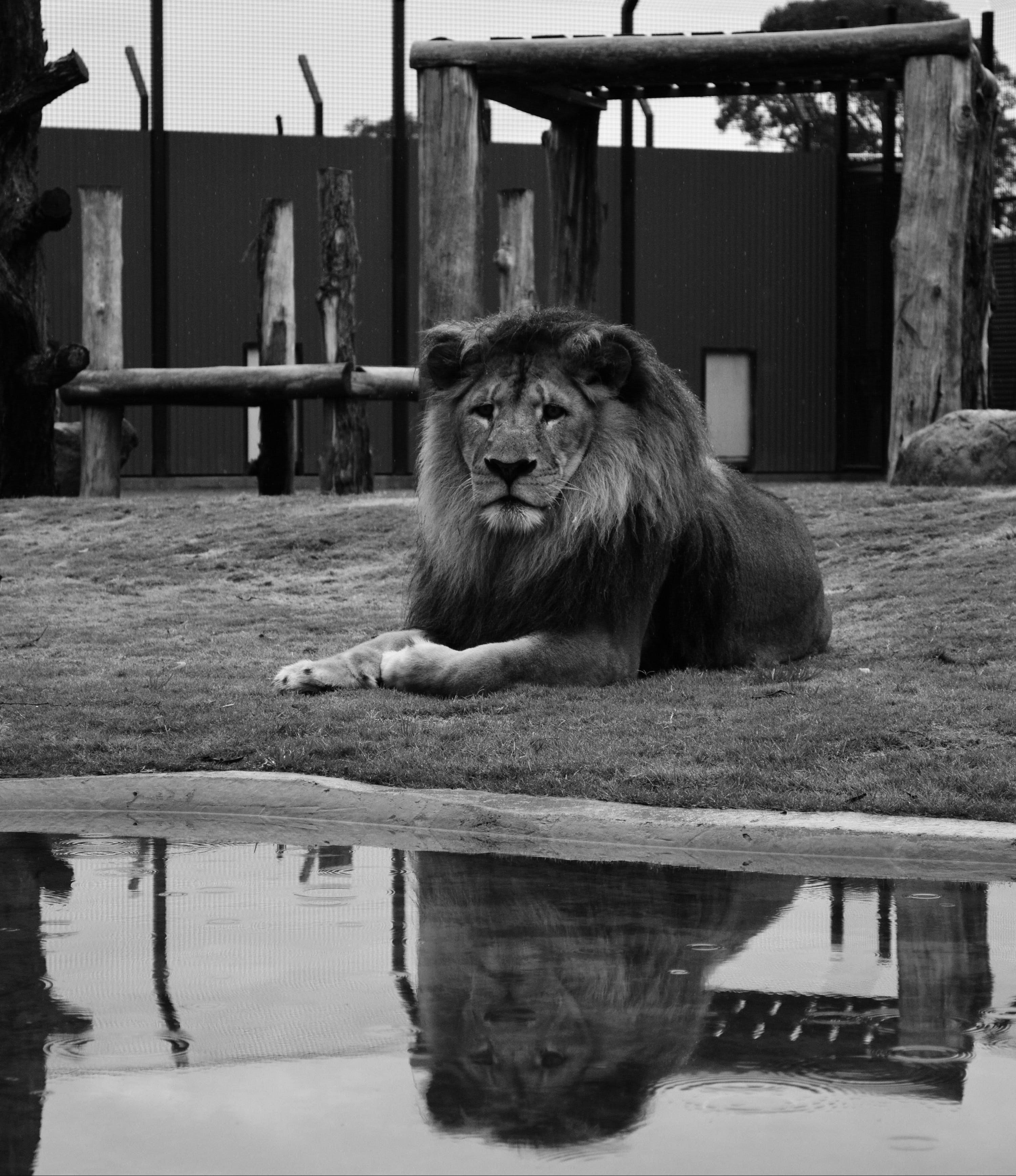 Hunter Valley Zoo - tourismnoosa.com
