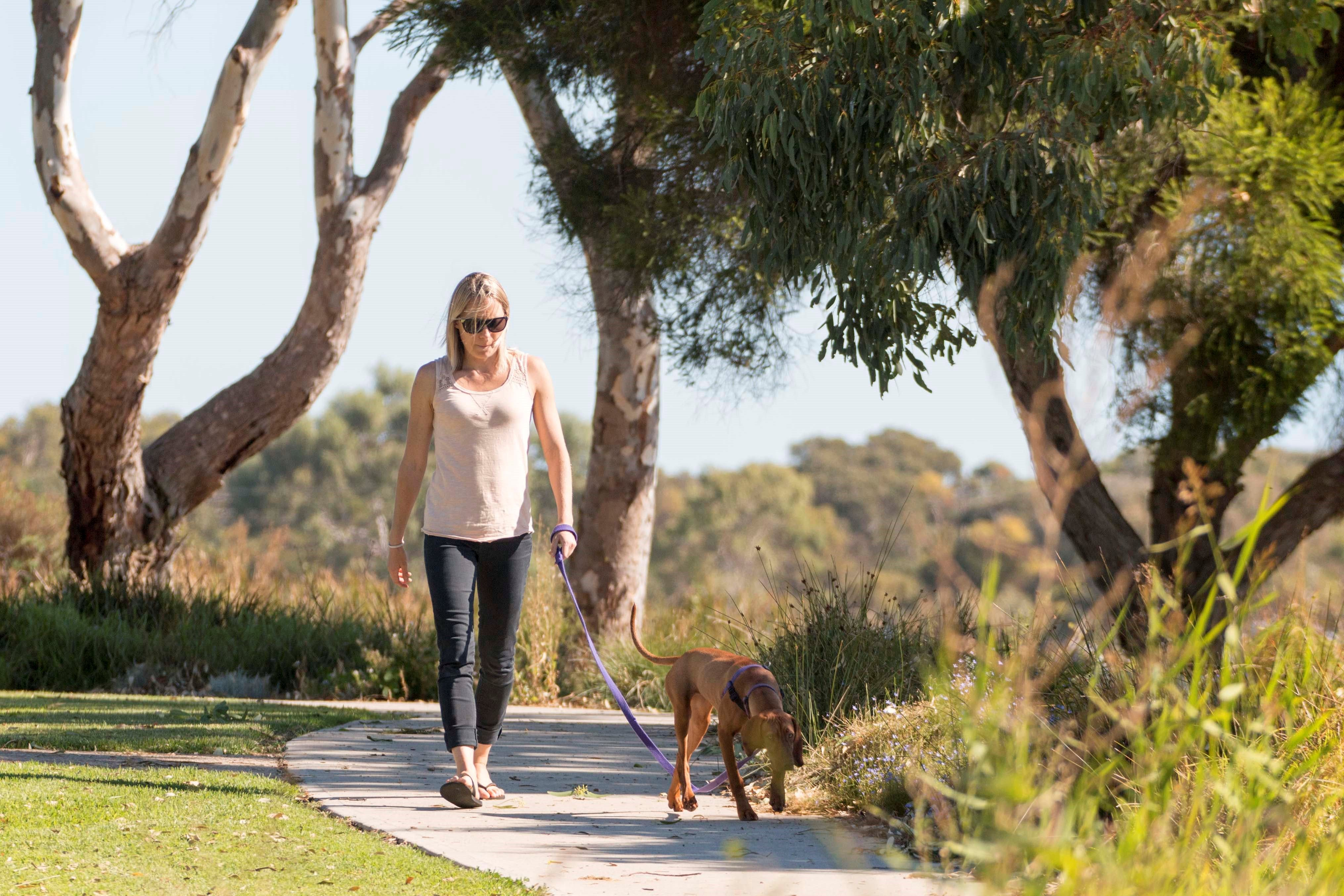 Meningie Walking and Cycling Trails - tourismnoosa.com