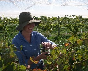 Kingsdale Wines - tourismnoosa.com