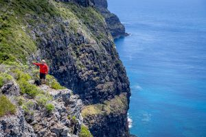 Seven Peaks Walk at Pinetrees Lord Howe Island - tourismnoosa.com