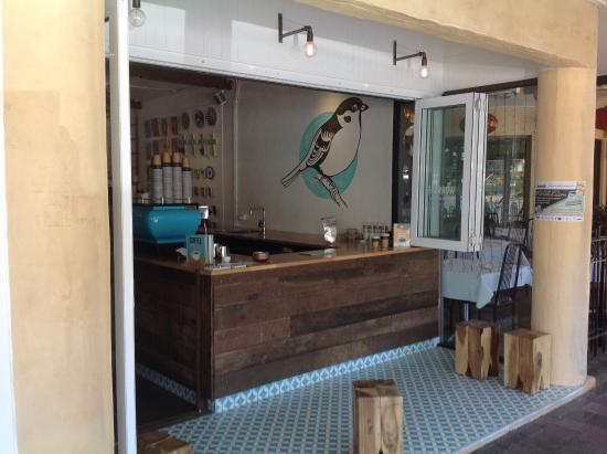 Sparrow Coffee - tourismnoosa.com