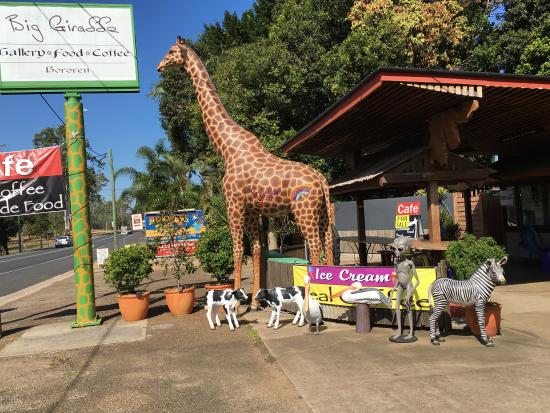 The Big Giraffe - tourismnoosa.com