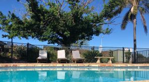 Hunter Morpeth Motel and Villa's - tourismnoosa.com